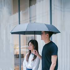 Kišobran Xiaomi Mi Automatic Umbrella